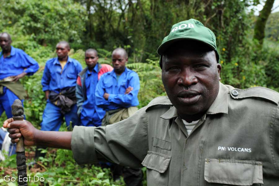 Francois, a guide who leads visitors in Volcanoes National Park during gorilla trekking in Rwanda.