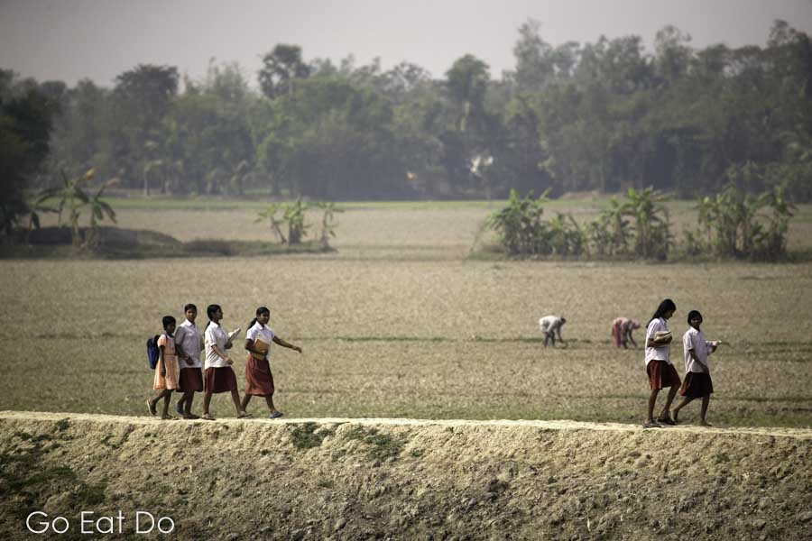 School children walking on a dyke in Sunderbans National Park, India