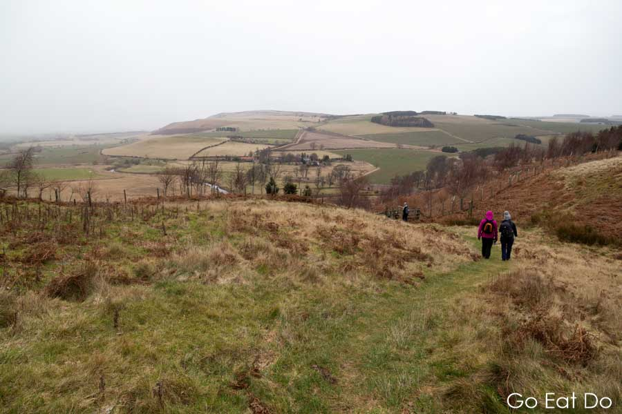 Northern Bootcamp participants walking on St Cuthbert's Way, a long distance footpath in the countryside of Northumberland.