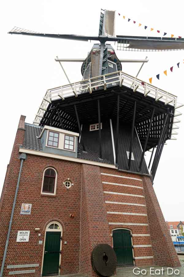 A typical Dutch landmark?