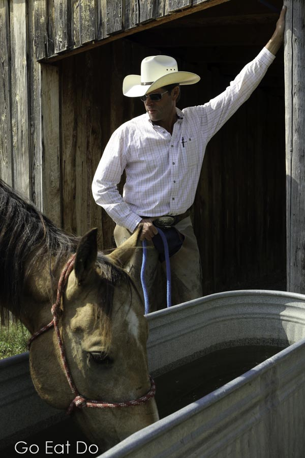 Horse feeds from a trough by cowboy-hat wearing George Gaber, owner of La Reata working ranch in Saskatchewan, Canada