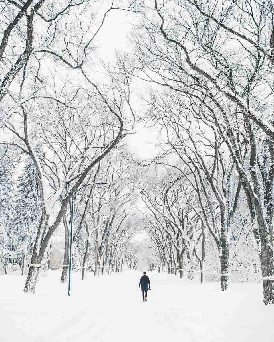 A stroll along a snowy lane is always an option if you're looking for things to do in Winnipeg in winter.