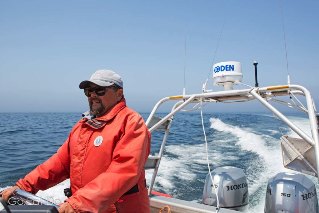 Captain Tom Goodwin navigating during an Ocean Expeditions Zodiac Whale Cruise off Nova Scotia's coast while whale-watching in the Bay of Fundy.