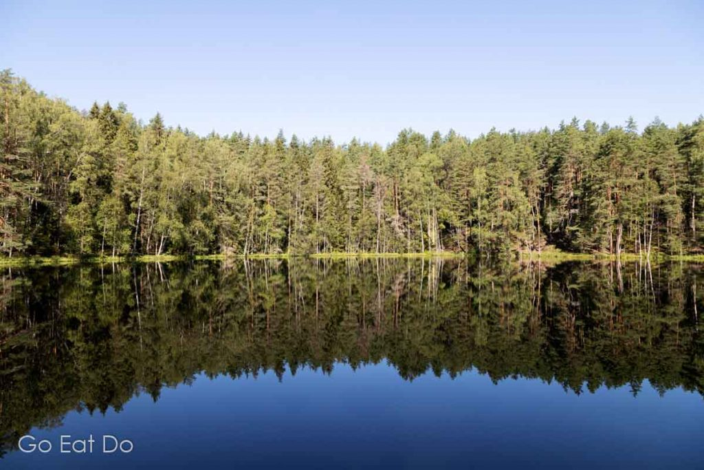 Trees reflect in the perfectly calm surface of Devil's Lake, also known as Velnezers, near Aglona, in the Latgale region of Latvia.